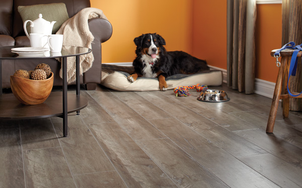 Richmond Laminate - Salisbury Collection Laminate Flooring