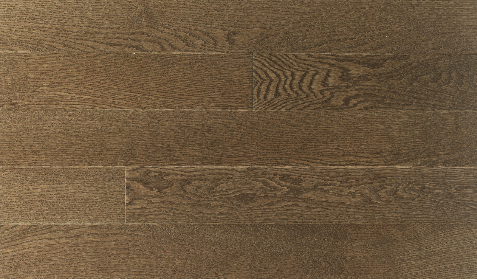 design-red-oak-arabica-select-and-better