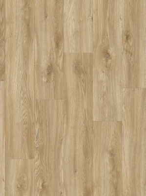 SIERRA OAK 58346 Impress moduleo